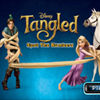 Tangled - Spot The Numbers