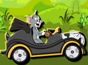 Tom And Jerry Green Valley