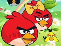 Angrybird Lover Fly